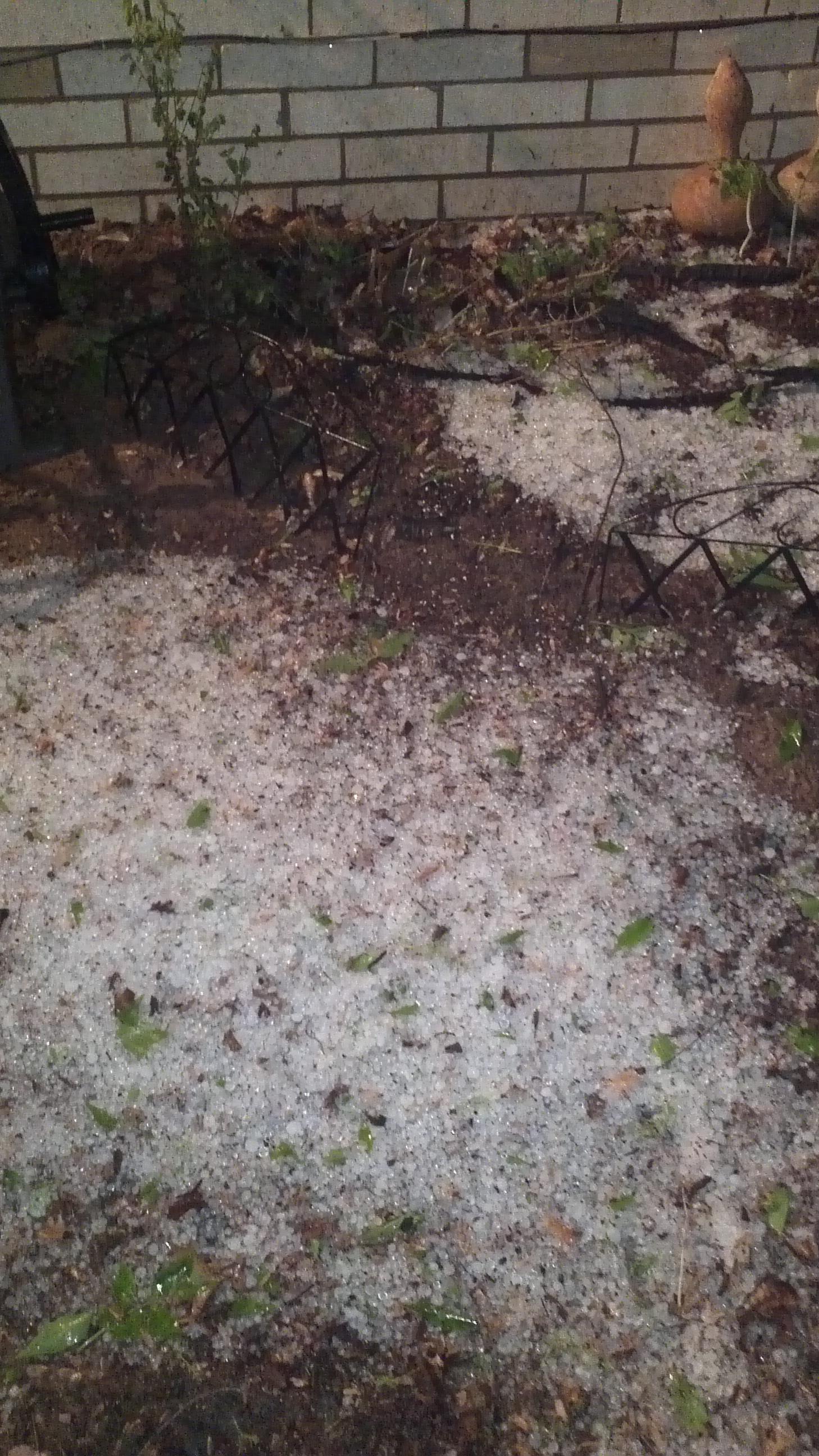 Charleston hail!