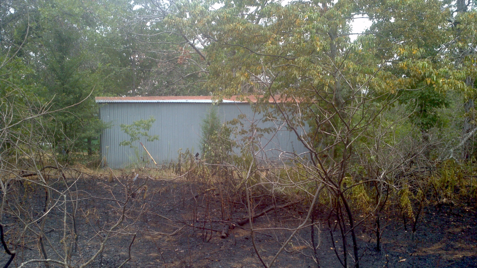 Burned grass from lightning strike near barn.