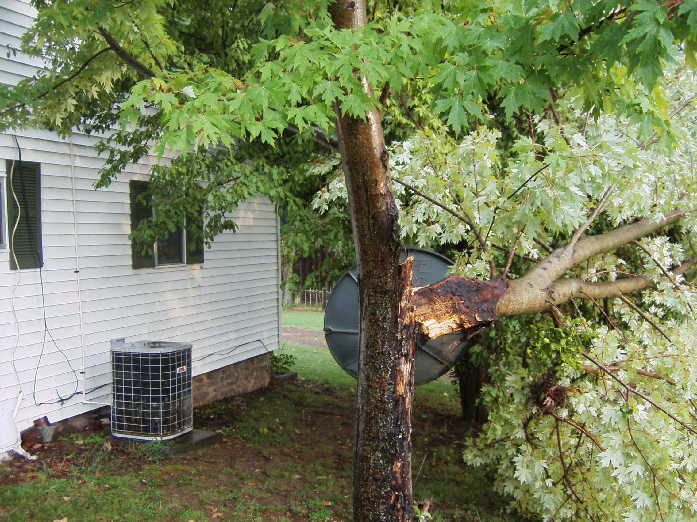 Damage North of Ozark