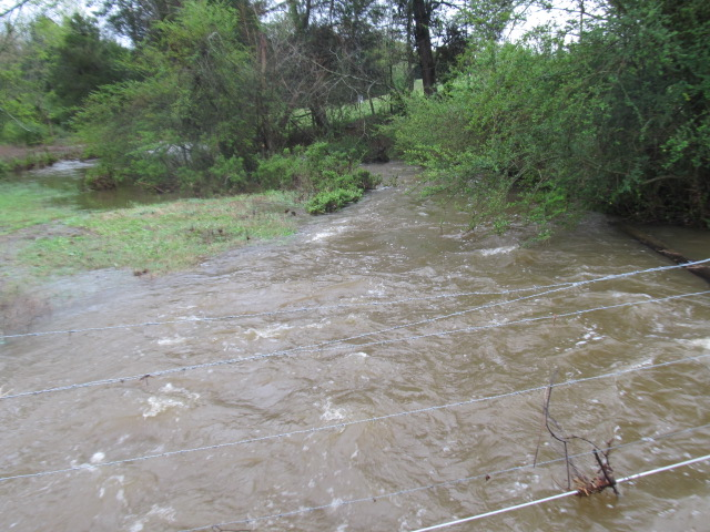 Creek in Clarksville