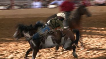 Bareback riding on Thursday night at the Old Fort Days rodeo.