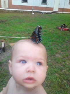 ashleigh beaver  and a butterfly