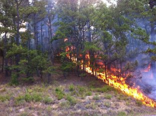Ola fire courtesy Yell Co. Sheriff's Facebook Page