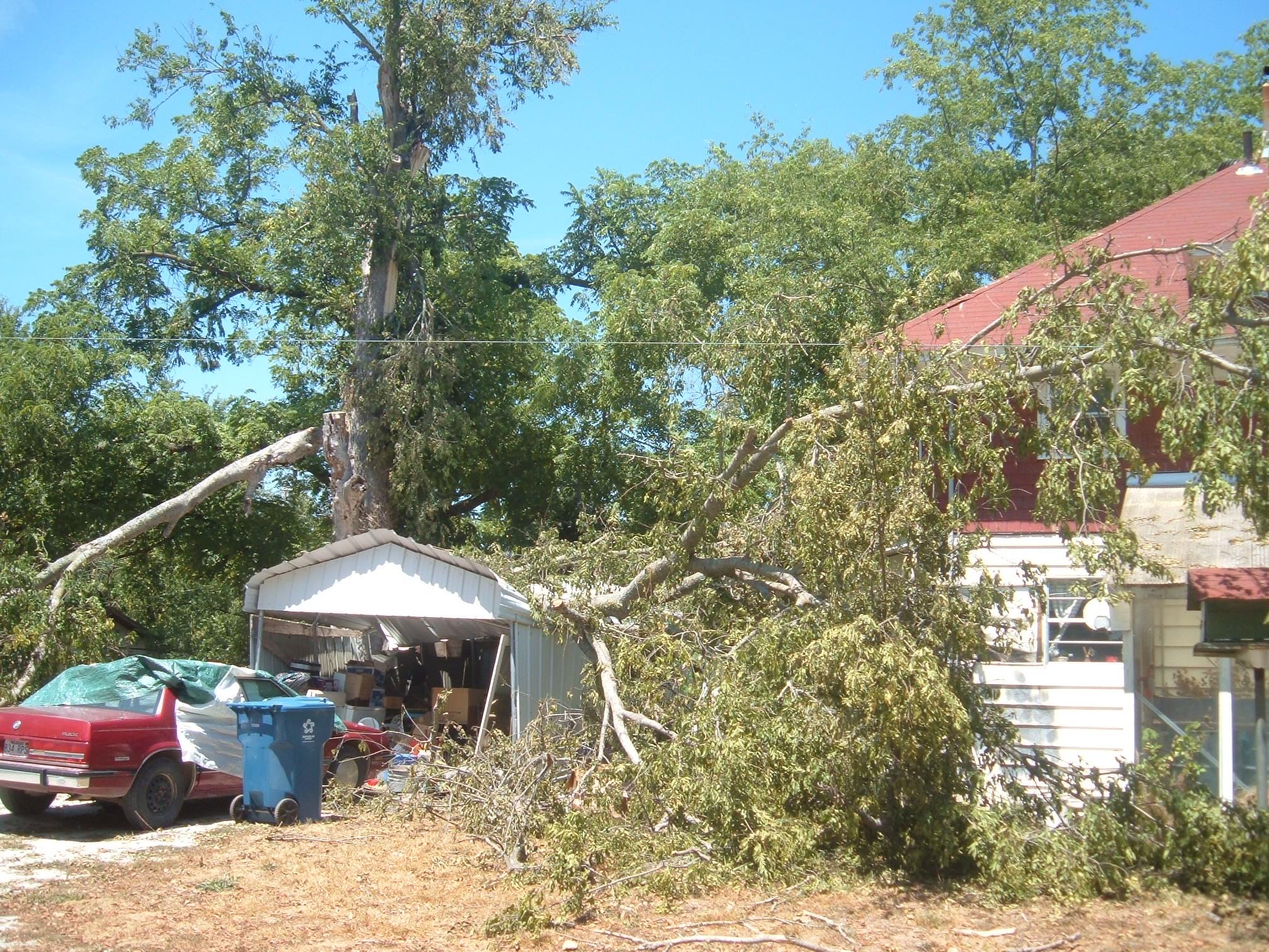 Sulphur Springs Storm Damage - Brown's Tree Care