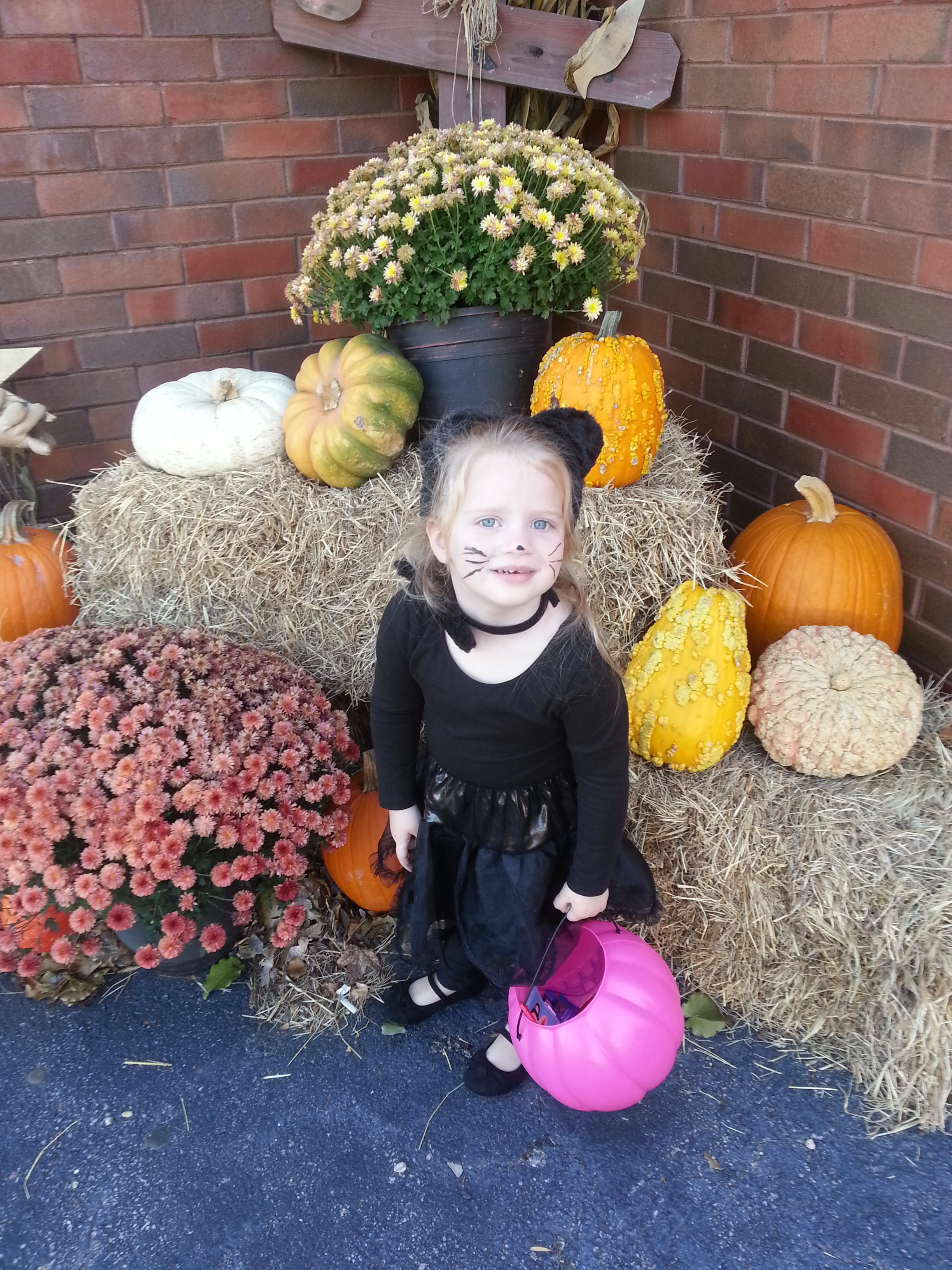 Chloe ready to trick or treat