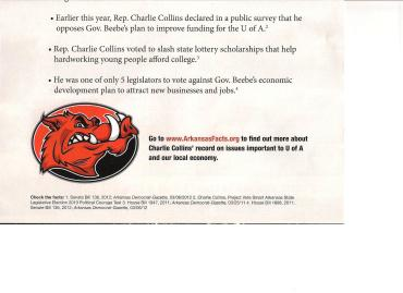 Razorback hog in political ad