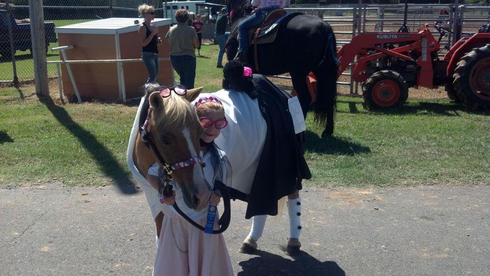 Hannah\'s pony Blaze rockin the 50\'s look.