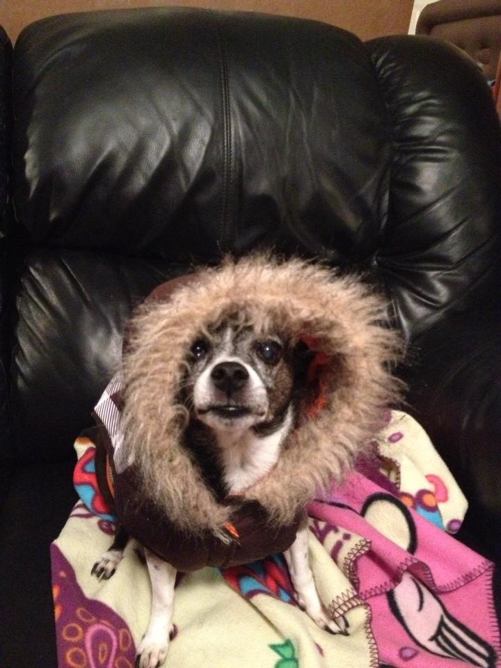 Loves her coat!!
