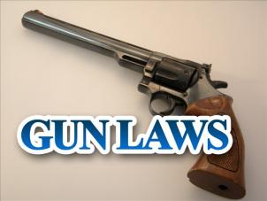 gun-laws