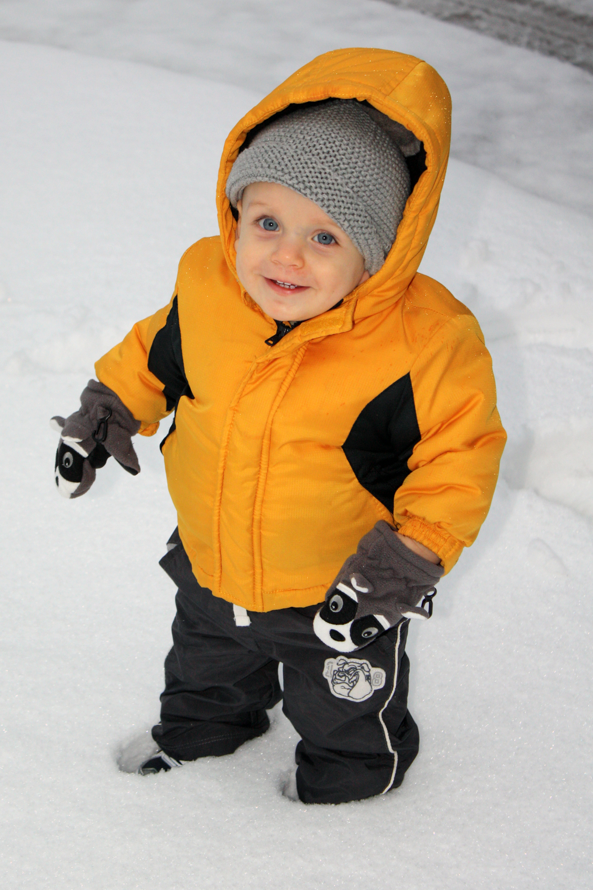 James Ransom, 11 months, enjoys playing in the snow for the first time. Son of Jeramy and Brittany Ransom of Van Buren.