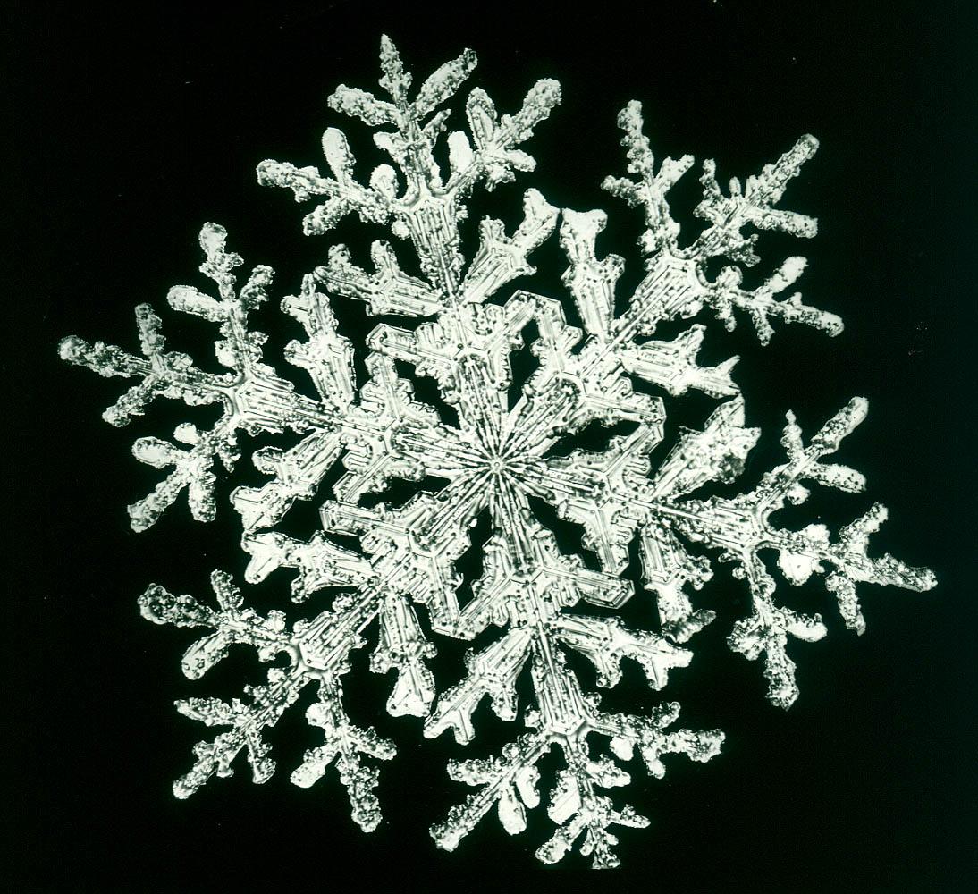 snowflake0572