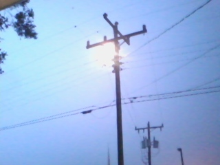 the pole set fire when a branch hit the wires