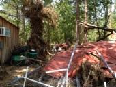 Scott County Damage 2