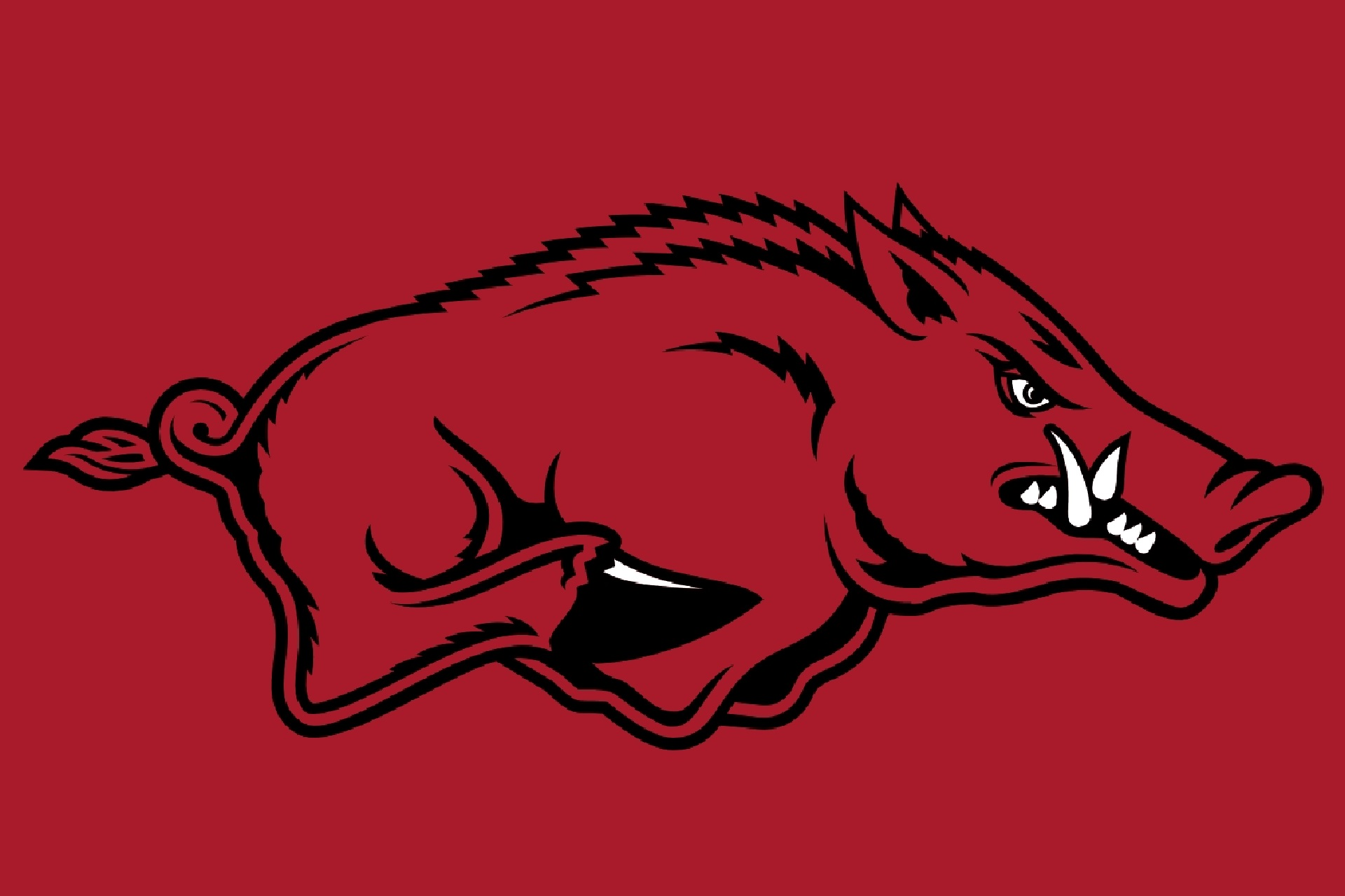 ARKANSAS LOGO