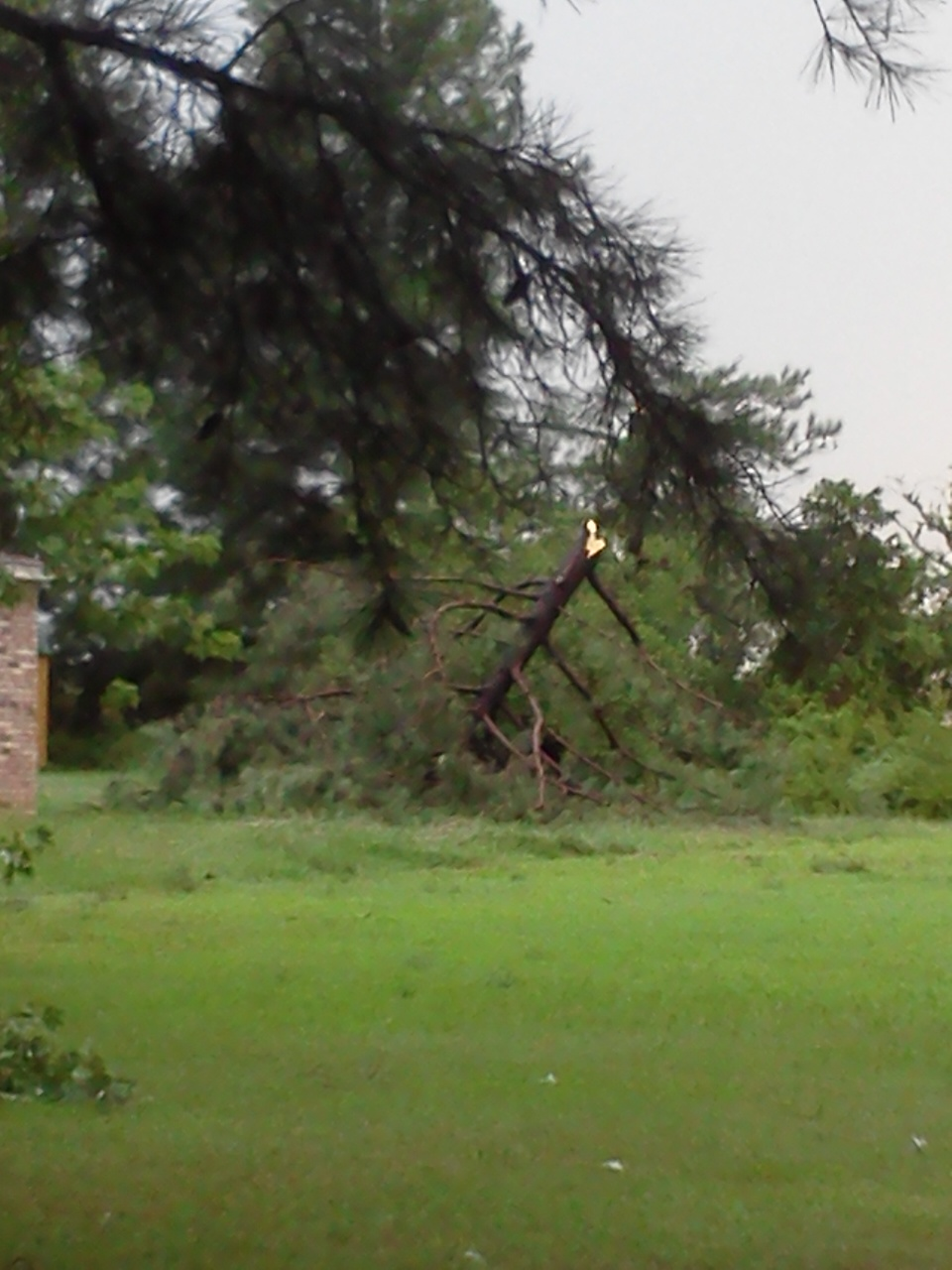 Storm damage 8/8/2013
