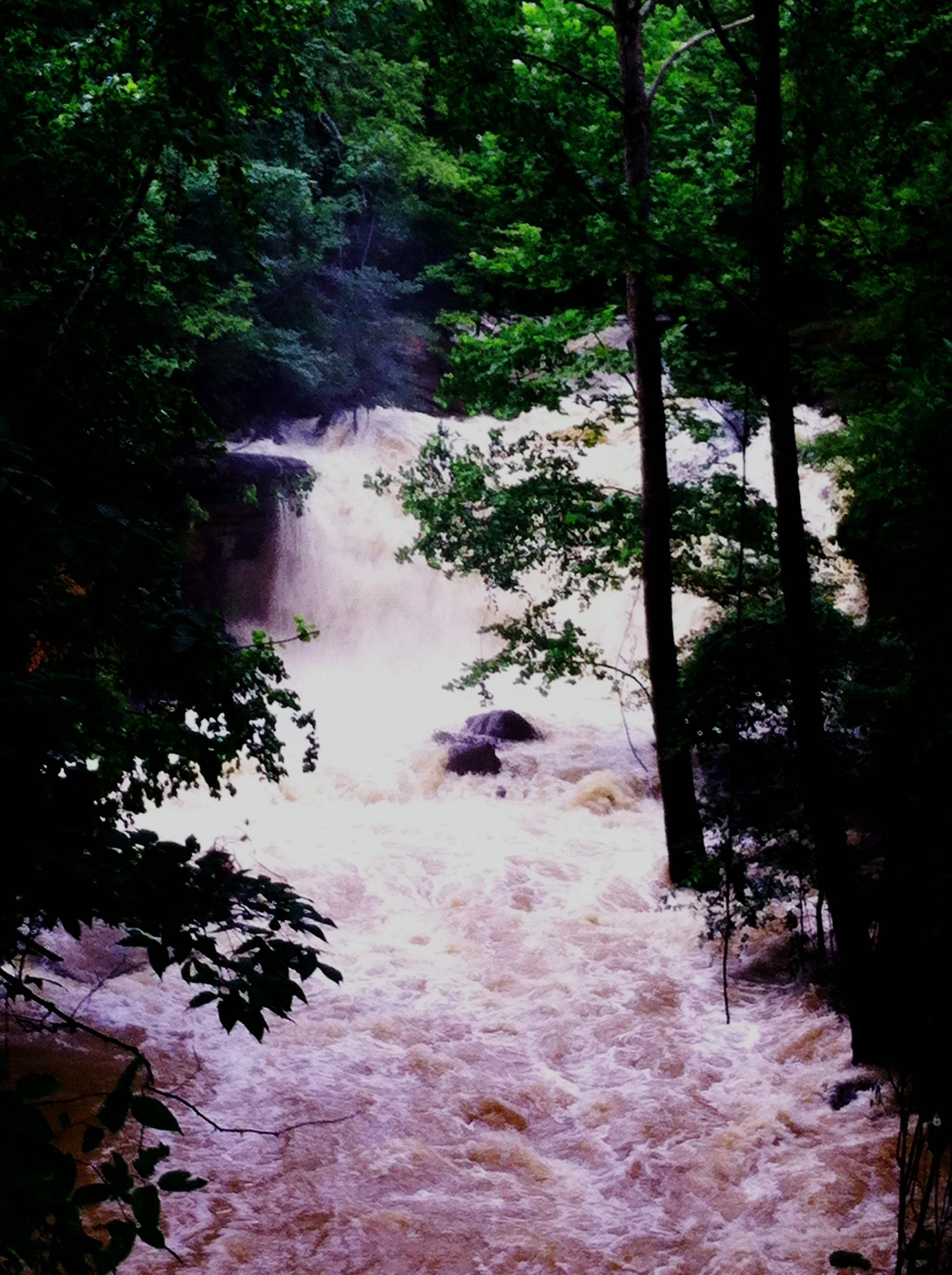 Bella Vista Waterfall Craig Richardson