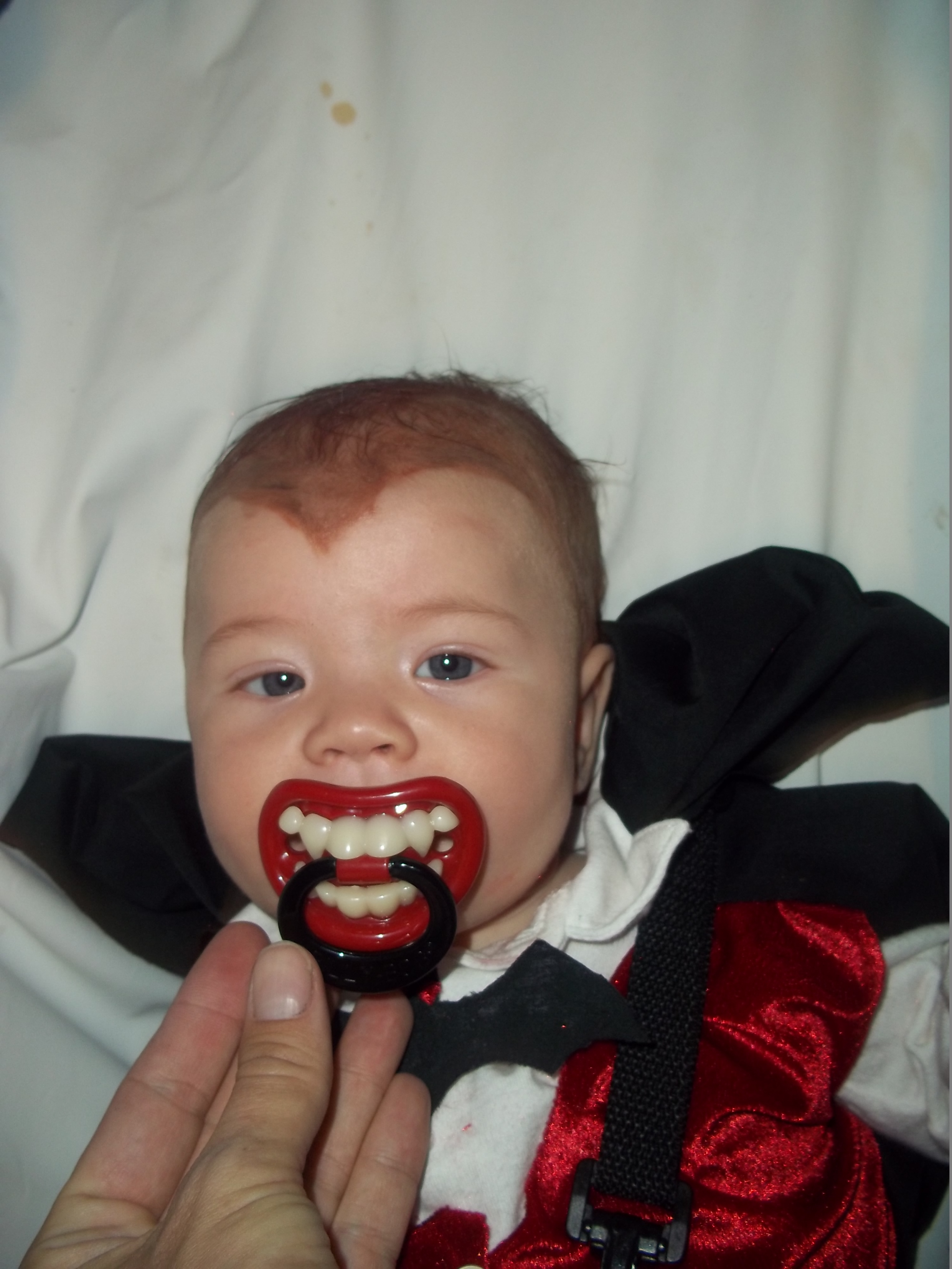 Dracula Daniel Nolte; 3 and 1/2 months old