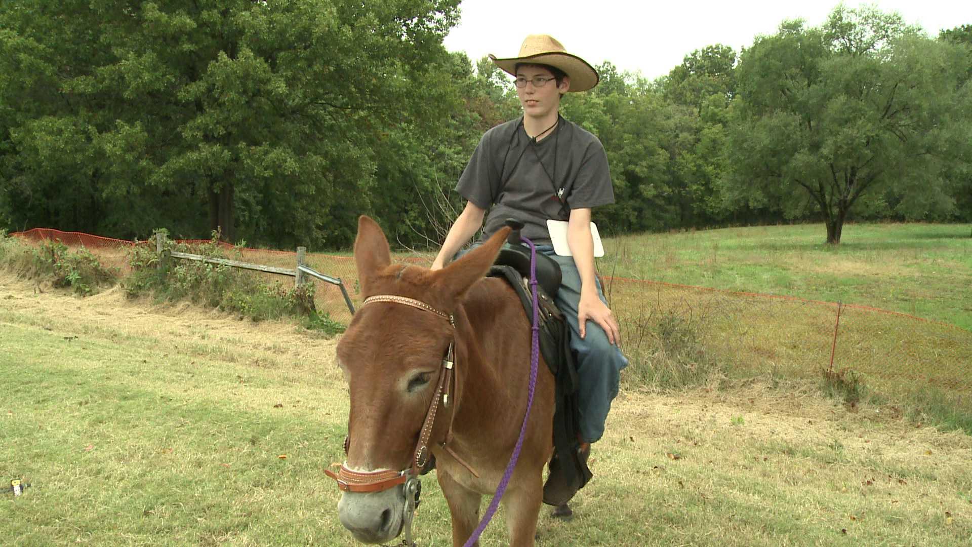 Pea Ridge Mule Jump Helps Autistic Teen 5newsonline Com