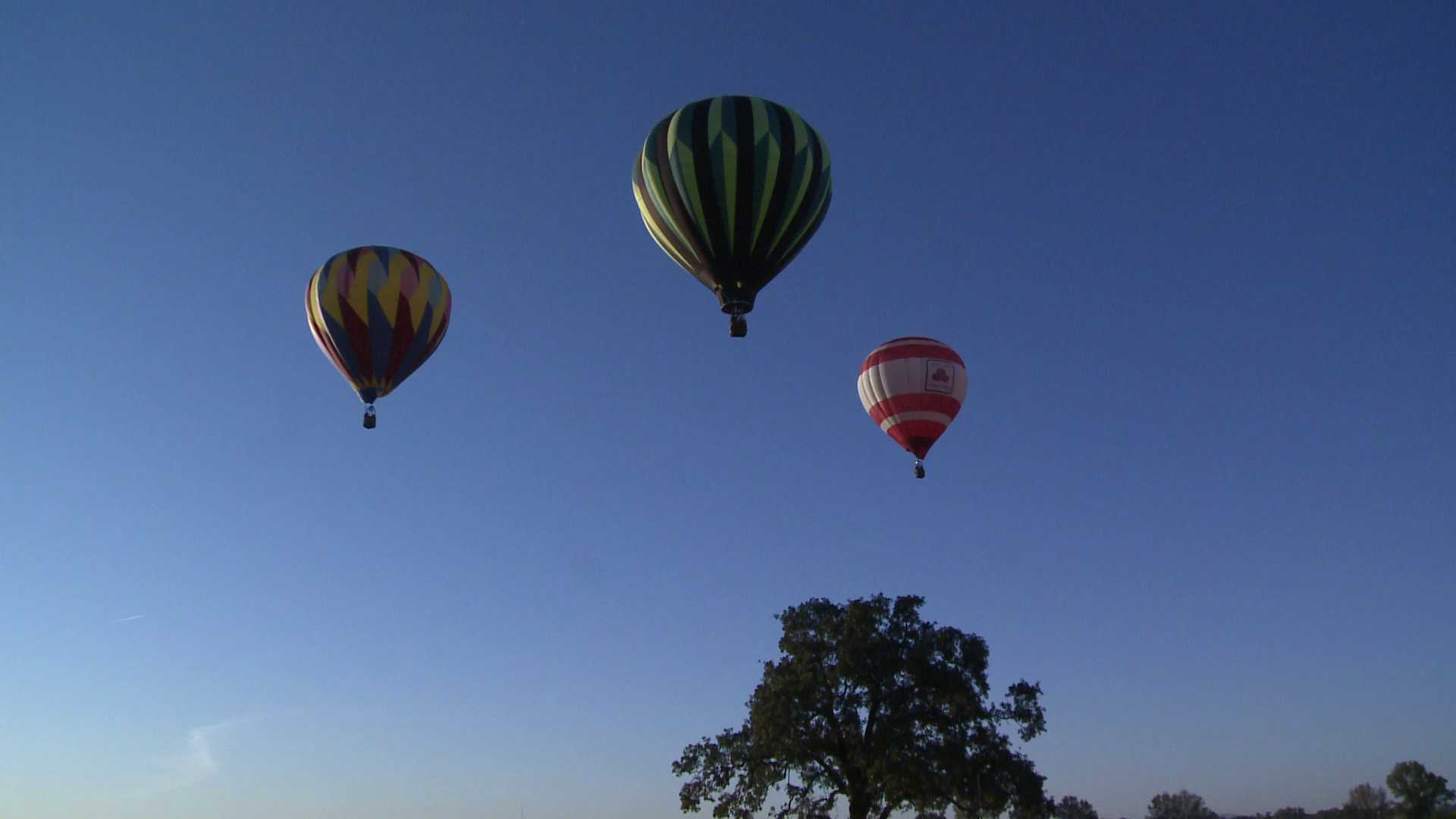 hot air balloons