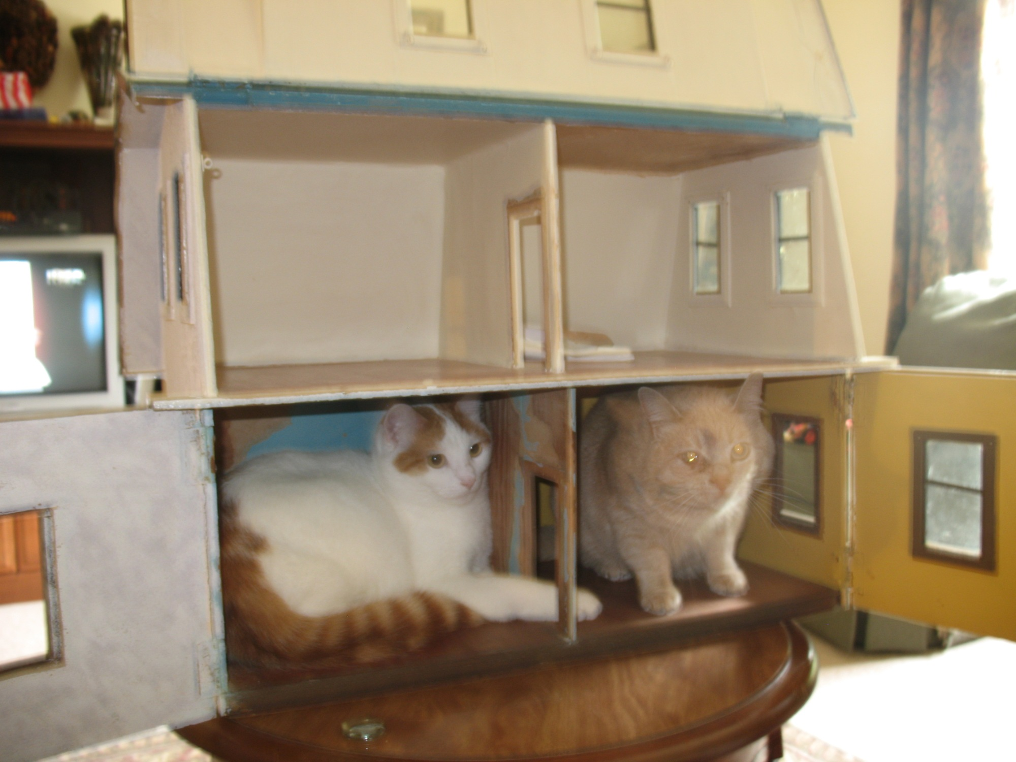 Wompus and Tails just can't stay out of this dollhouse long enough for me to work on it. If they see me go anywhere near it the jump inside. Guess I might have to find a new hobby...lol