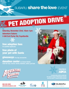 REVISED POSTER - Adoption Event 2013