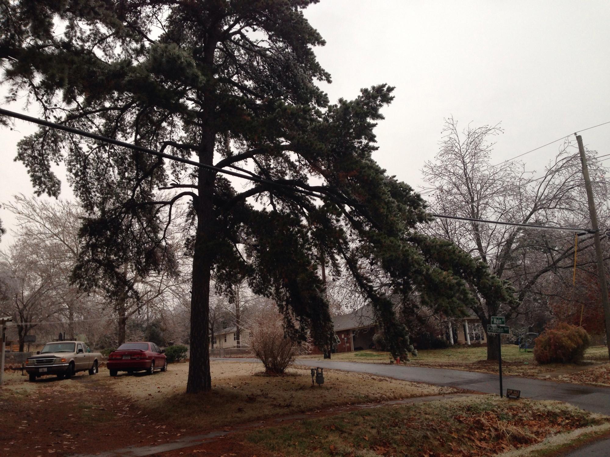 Greenwood Ice
