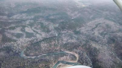 Aerial view of ground covered during search. (Photo courtesy of the Arkansas Forestry Commission.)
