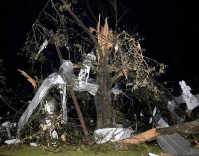 Debris hangs from a tree after a tornado hit the town of Mayflower, Arkansas
