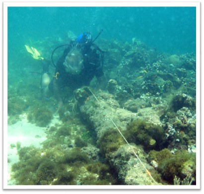 Credit: Brandon Clifford. Explorer Barry Clifford believes these are the remains of Columbus' Santa Maria.