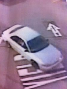 McDonalds Theft Suspect 2