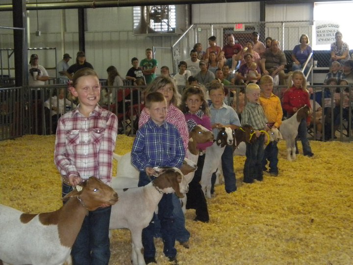 Photo courtesy Benton County Fair