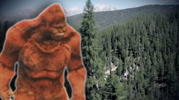 Bigfoot (2)