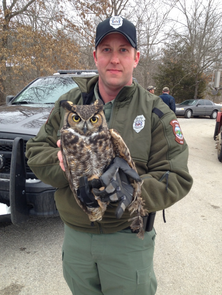 Arkansas game and fish officer rescues owl tangled in for Arkansas game fish