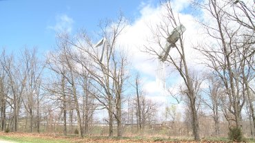 clifty tornado damage
