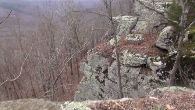 Man dies child in critical condition after falling near for White rock mountain cabins