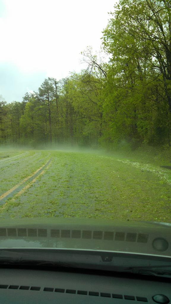Leaf-covered roads after hailstorm near Mt. Magazine, sent in by Carla Molton.
