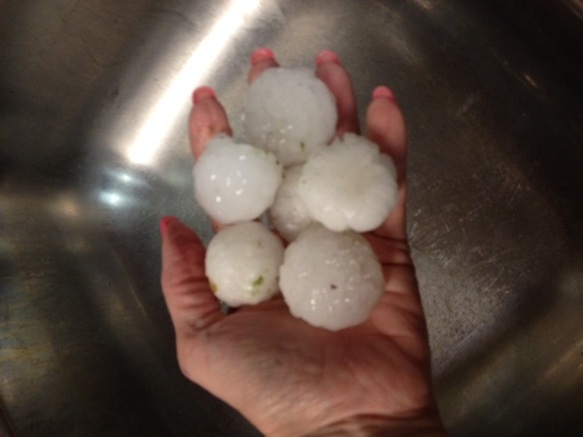 Golfball-sized hail in Midland, sent in by Nancy Looper