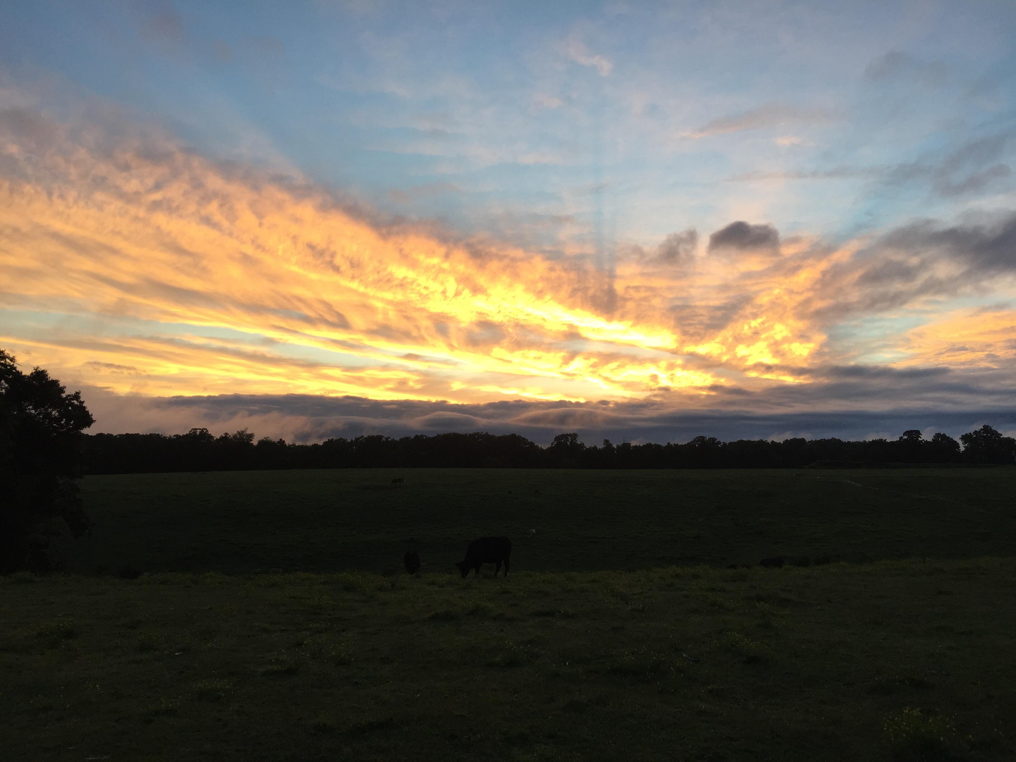 Sunset in Cedarville from 5NEWS viewer Kassie Jenkins