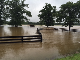 Greenwood Flooding