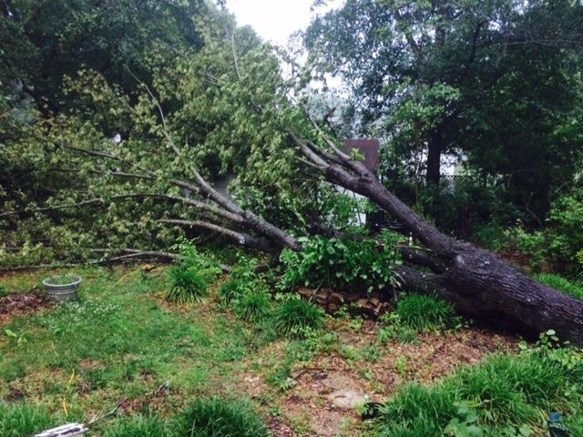 High wind in Booneville