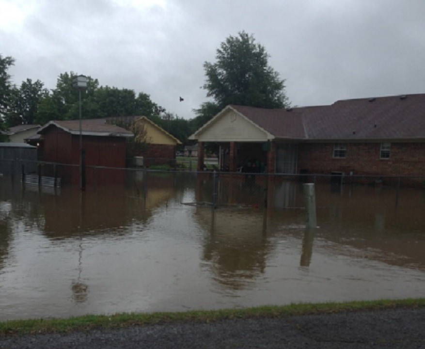 Mansfield from 5NEWS viewer Bethany