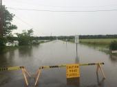 Near Lavaca at Hickman Bluff Road