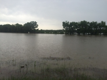 Near Lavaca at Hickman Bluff Road