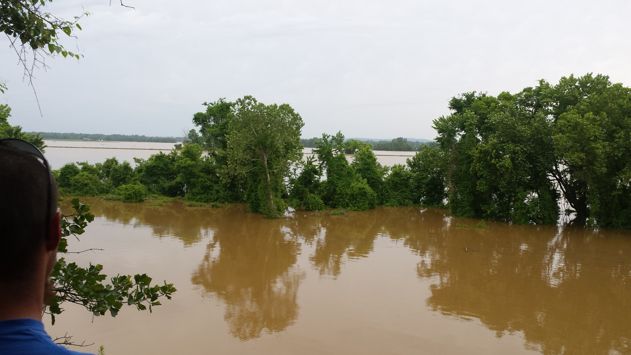 Poteau River. The Arkoma Bottoms from 5NEWS Viewer Megan