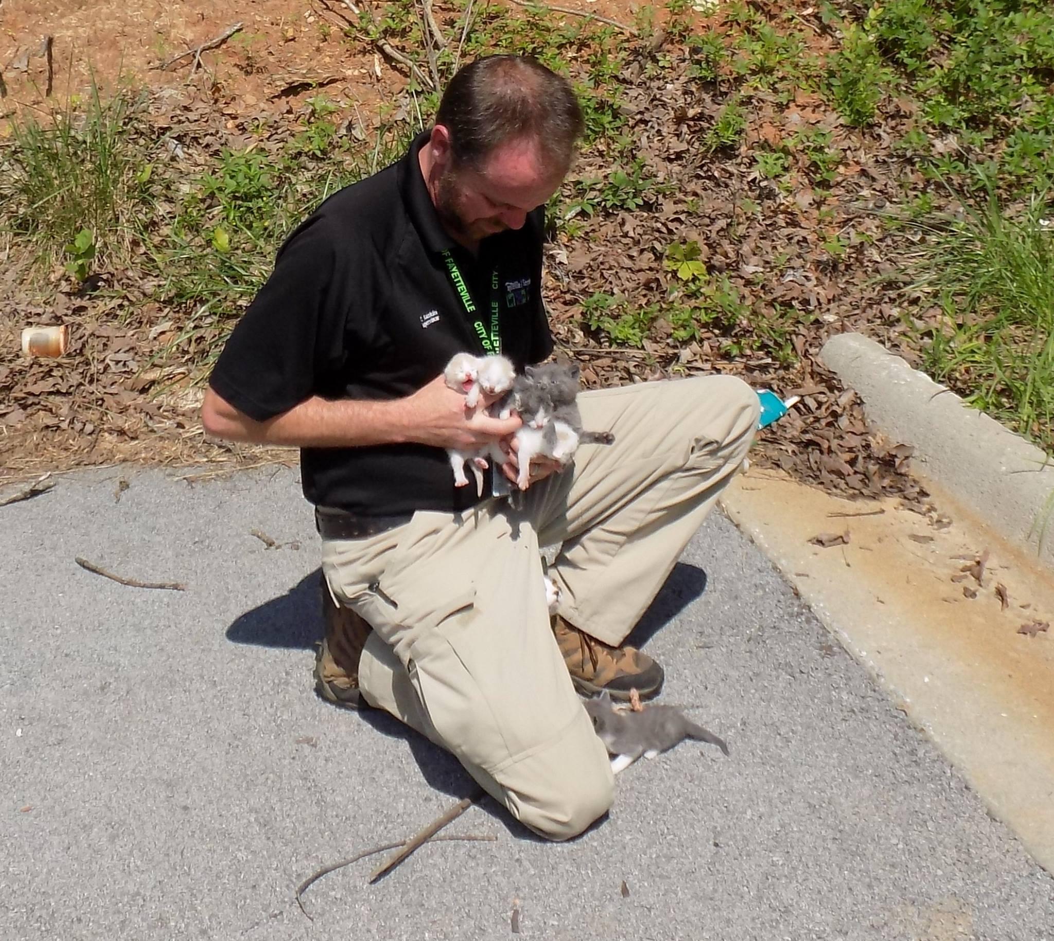 Courtesy: Fayetteville Animal Services