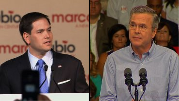 U.S. Sen. Marco Rubio and former Gov. Jeb Bush are bumping heads in three critical swing states -- Florida, Ohio and Pennsylvania -- after a recent Quinnipiac University Swing State poll was conducted.