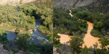 The Animas River before and after a mine waste spill.