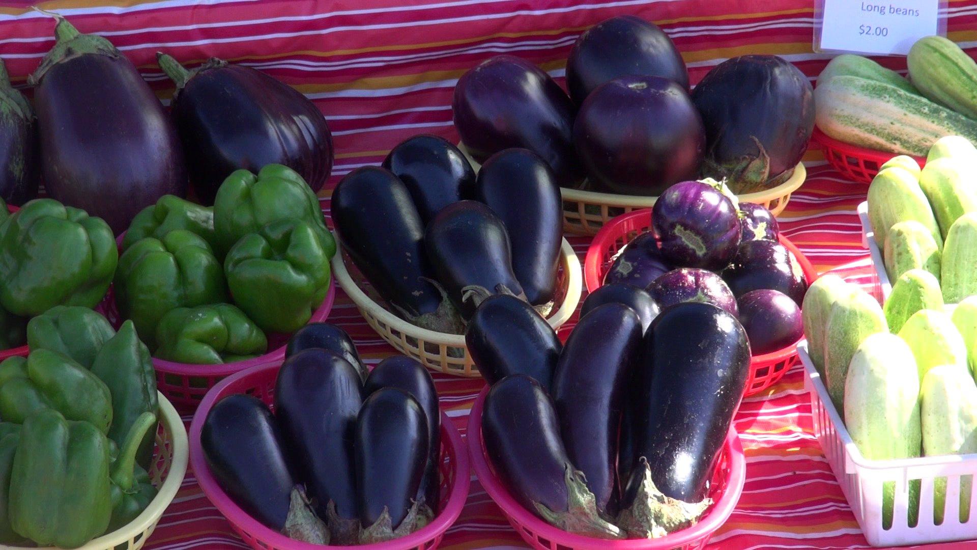 FSM Farmers Market