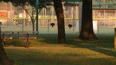 walker park2
