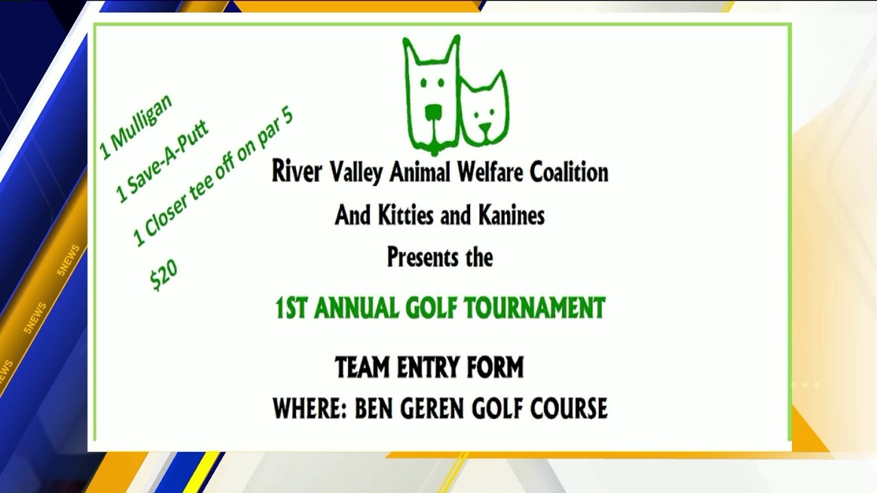 golf tournament kitty viz